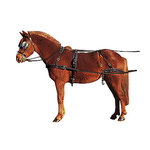 equipement-attelage-cheval-Harnais-A-Bricole-